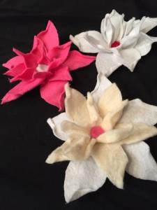 Viacalimala-corso-fiore-d'inverno-Elena-Remogna-4